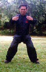 Tai Chi Chuan Three Circles Stance