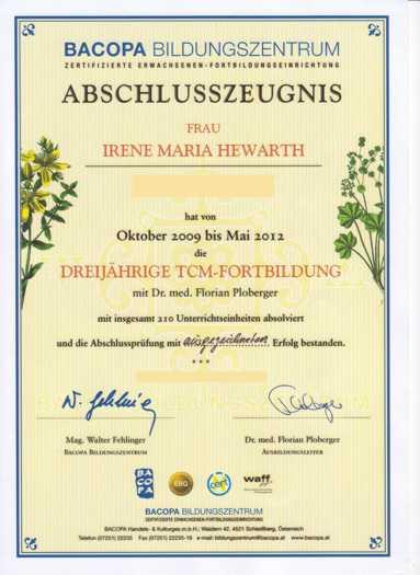 Qigong Linz TCM (traditionell chinesische Medizin) Zertifikat